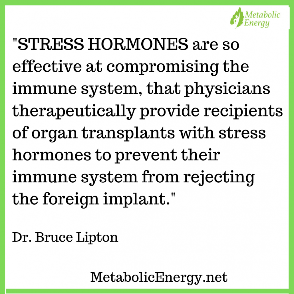 adrenal exhaustion, stress hormones